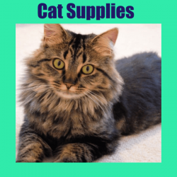 cat cat supplies 250x250 - Home