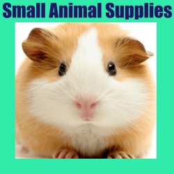 cat small animal supplies 250x250 - Home