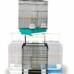 60031814 250x250 - Prevue Pet Products Pre-Packed Cockatiel Playtop Cages 18x14x26 4pc