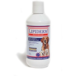 International Vet Lipiderm for Dogs - Healthy Skin & Coat