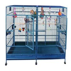 80x40 double macaw cage in stainless steel 250x250 - On Sale Now