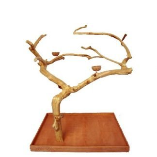 Large Java Wood Tree (48x32x66 in)