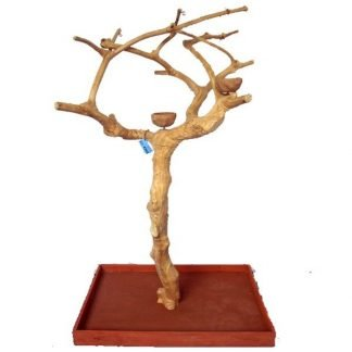 Small Java Wood Tree Boxed (38x24x61 in)
