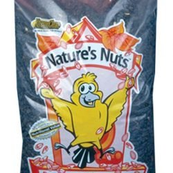 Chuckanut Natures Nuts Premium Black Oil Sunflower Seed (5lb)