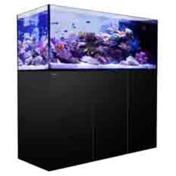 Red Sea REEFER Peninsula 650 White