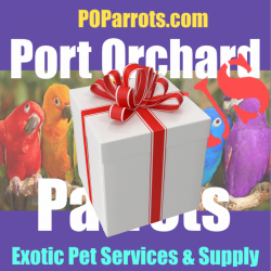 Port Orchard Parrots Plus Gift Certificate / Store Credit
