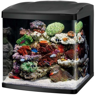 Coralife LED BioCube Aquarium 32gal