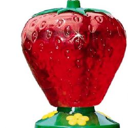 perky pet strawberry hummingbird feeder 48oz 250x250 - Perky-Pet Strawberry Hummingbird Feeder (48oz)