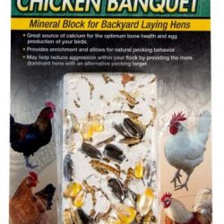 zoo med chicken banquet mineral block for backyard laying hens 250x250 - Zoo Med Chicken Banquet Mineral Block for Backyard Laying Hens