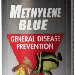 30839 250x250 - Kordon Methylene Blue General Disease Prevention (4 oz)