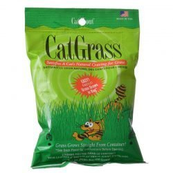 38972 250x250 - Gimborn Cat Grass Plus (3.5 oz Bag)