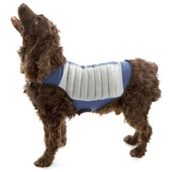 cool k9 dog cooling jacket small bluegray 250x250 - Cool K9 Dog Cooling Jacket Small Blue/Gray