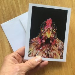 """Cleo the Aussie Hen"" Greeting Card"