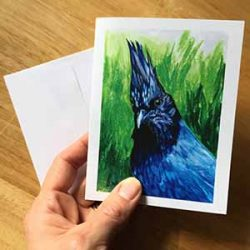 "stellarsj small 250x250 - ""Stellar's Jay"" Greeting Card"