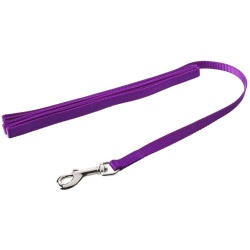 "19148 250x250 - Coastal Pet Nylon Lead - Purple (6' Long x 3/8"" Wide)"