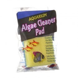 23138 250x250 - Blue Ribbon Double Sided Algae Cleaning Pad