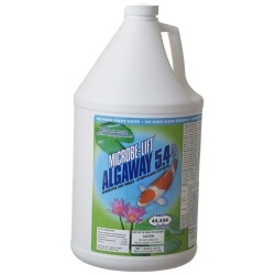 Microbe-Lift Algaway 5.4 for Ponds (1 Gallon [Treats 45,424 Gallons])