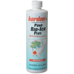 Kordon Pond Rid-Ich + Disease Treatment (16 oz)