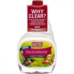 31967 250x250 - Kaytee ElectroNectar Concentrate for Hummingbirds (16 oz)