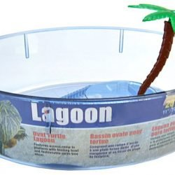 "Lees Turtle Lagoon - Assorted Shapes (Oval Shaped - 11""L x 8""W x 3""H)"