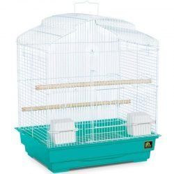 """71188 250x250 - Prevue Dometop Bird Cage (1 Pack - 18""""L x 14""""W x 23""""H - [Assorted Colors])"""