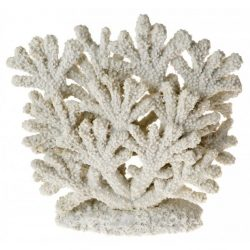 79900 250x250 - Exotic Environments Coral Fan - White - Medium (1 Count)