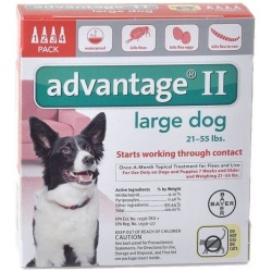 85238 250x250 - Advantage II Flea Treatment - Large Dogs (4 Pack)