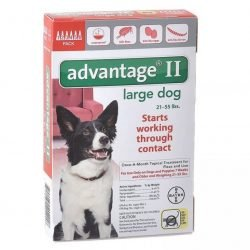 85241 250x250 - Advantage II Flea Treatment - Large Dogs (6 Pack)