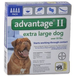 85262 250x250 - Advantage II Flea Treatment - X-Large Dogs (4 Pack)