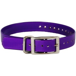"the buzzards roost replacement collar strap 1 purple 1 x 24 250x250 - The Buzzard's Roost Replacement Collar Strap 1"" Purple 1"" x 24"""