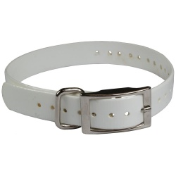"the buzzards roost replacement collar strap 34 white 34 x 24 250x250 - The Buzzard's Roost Replacement Collar Strap 3/4"" White 3/4"" x 24"""