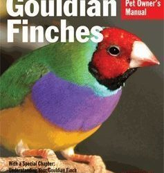 barrons gouldian finches pet owners manual by gayle soucek 237x250 - Barron's Gouldian Finches Pet Owner's Manual by Gayle Soucek