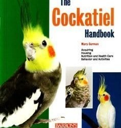 barrons the cockatiel handbook by mary gorman 237x250 - Barron's The Cockatiel Handbook By Mary Gorman