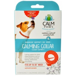 82445 250x250 - Calm Paws Calming Collar for Dogs (1 Count)