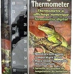 Reptology Digital Thermometer (1 Pack)