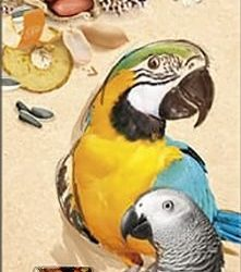 A&E Cage Company Smakers Parrot XXL Nut Treat Sticks (2 count)